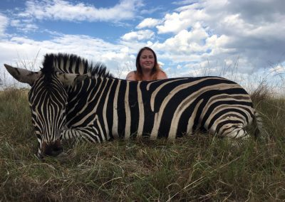 zebra-hunt-eastern-cape-hunt