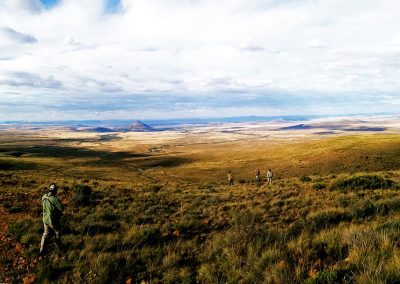 adrian-scenery-karoo