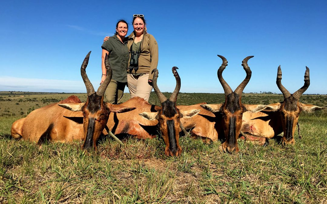 CULL HUNT EASTERN CAPE